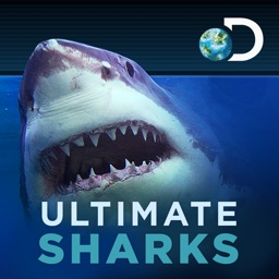 Ultimate Sharks Free