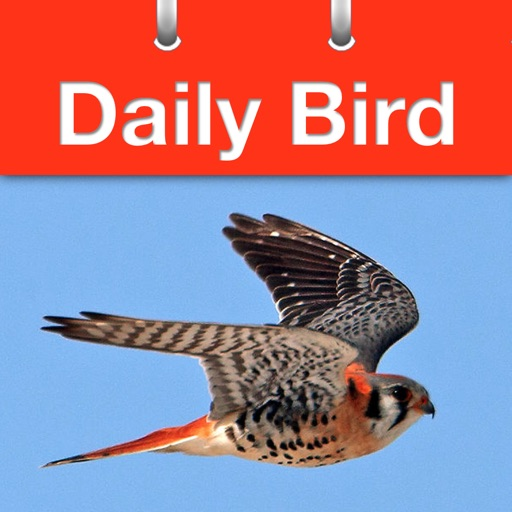 Daily Bird - the beautiful bird a day calendar app