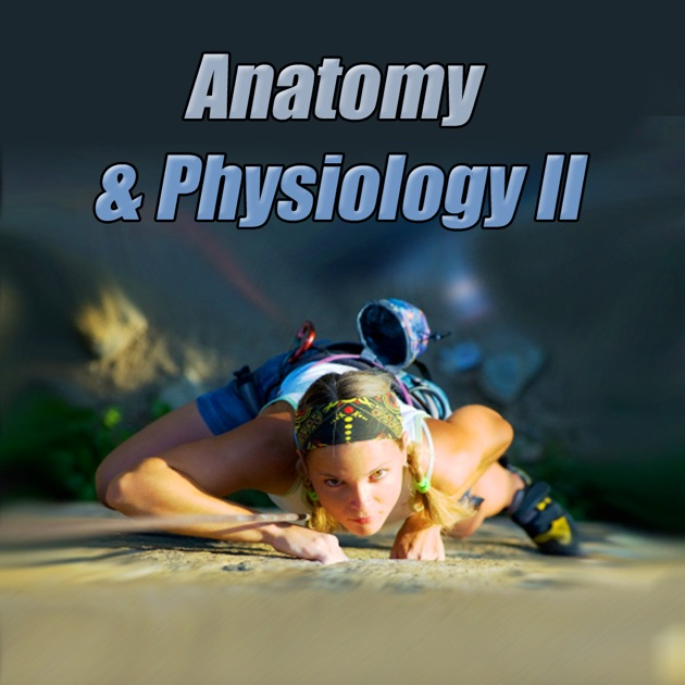 StudyWise Anatomy & Physiology on the App Store
