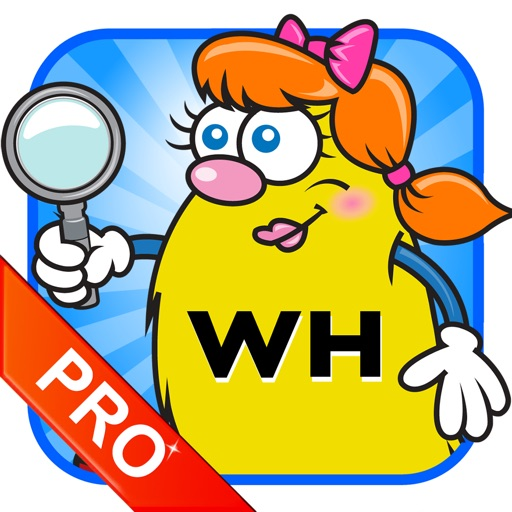 WH Question Cards - Pro: Who, What, When, Where, Why
