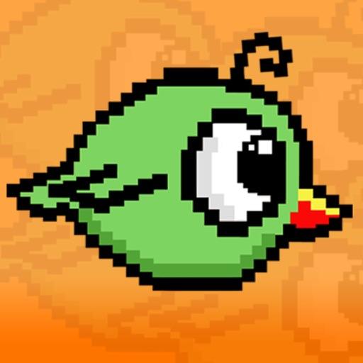 Coo Coo Birdy