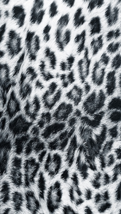 Skin My Skin - Animal Print