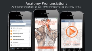 Anatomy Pronunciations review screenshots