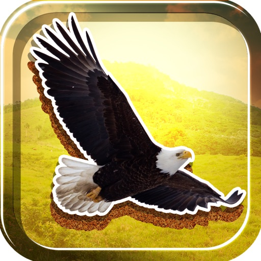 American Eagles Slide Puzzle Pro Game Full Version icon