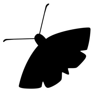 The Moth app
