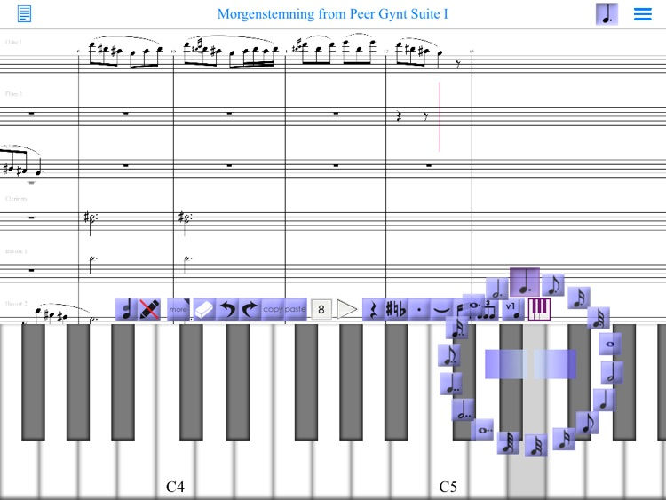 iWriteMusic SE for iPad