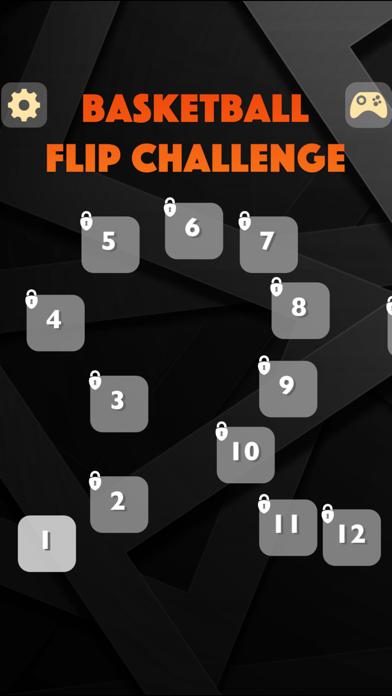 Basketball Flip Challenge