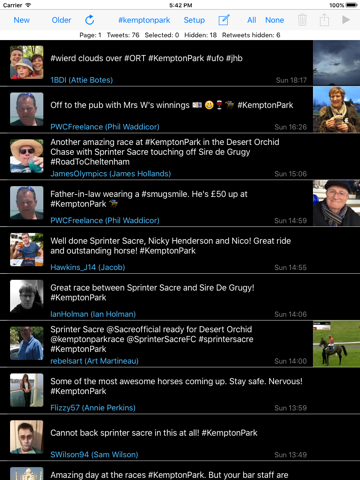 TweetDirector - náhled