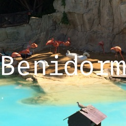 Benidorm Offline Map by hiMaps
