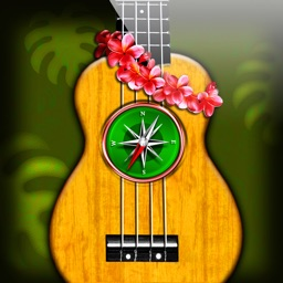 Ukulele Chords Compass- learn the chord charts & play them