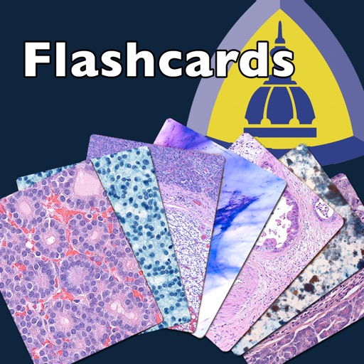 Johns Hopkins Flashcards