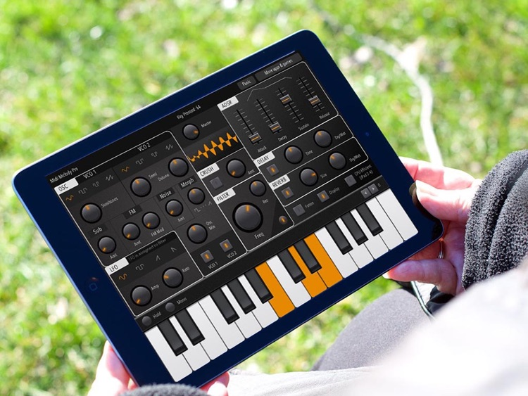 Midi Melody Pro: Full-featured iPad synthesizer screenshot-1