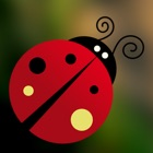 Outfolded Bug Crossy Dark Maze icon