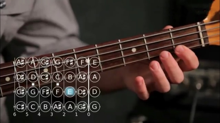 Play Bass screenshot-4
