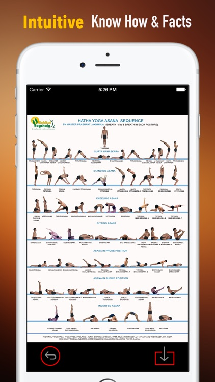 Hatha Yoga 101: Techniques and Tutorials