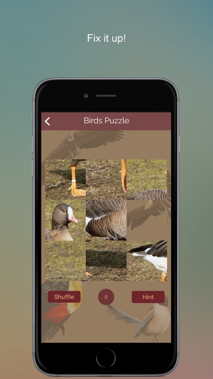 Non Perching Birds PRO: SMART guide to Non Passerines with Games and Puzzles screenshot-3