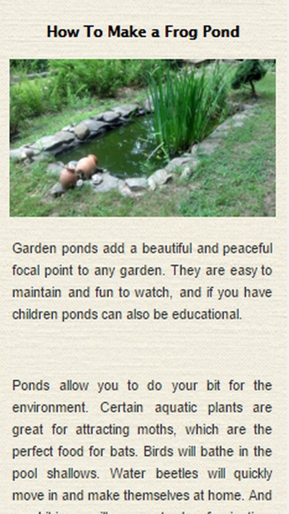 How To Build A Pond