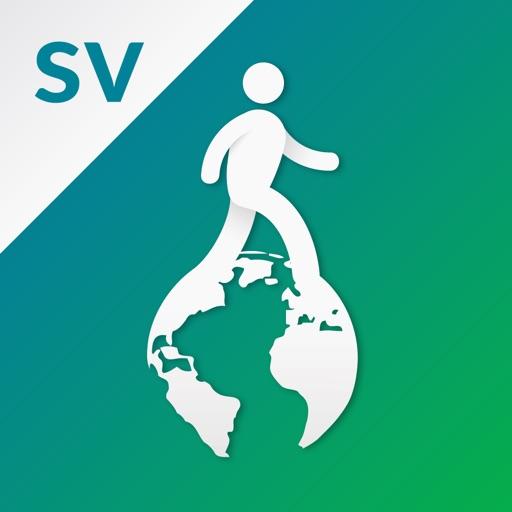 Virtual Walk with Google Street View™