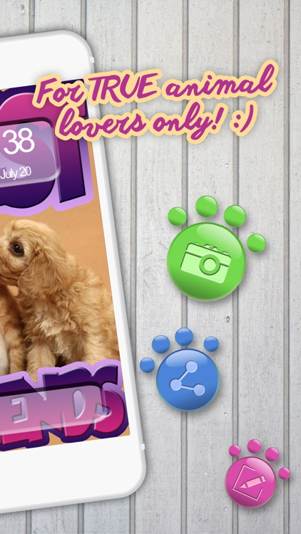 Cute Animal Wallpapers & Background.s - Collection of Adorable Dog.s and Cat.s Wallpaper Picture.s