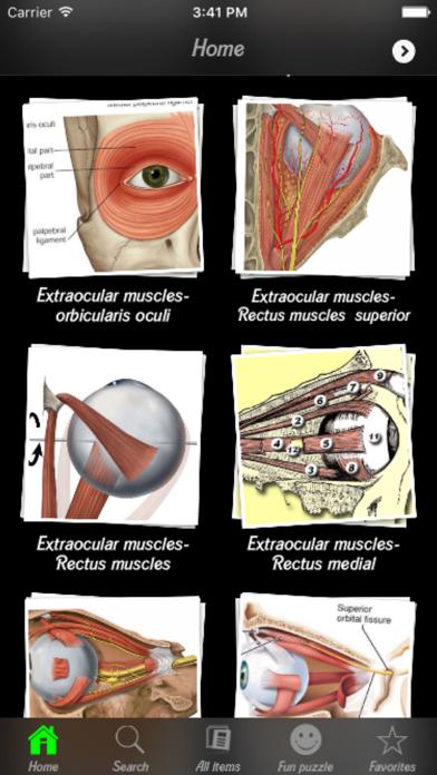 Human Muscles Infoのおすすめ画像4