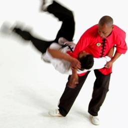 Shaolin Kung Fu Expert