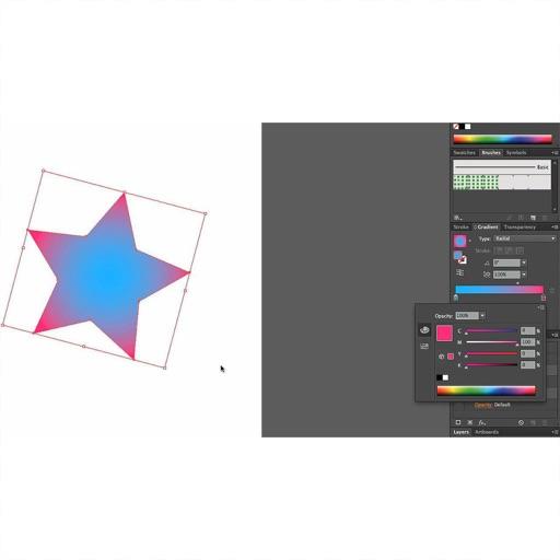 Lessons: for Adobe Illustrator
