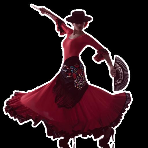 Flamenco Dance Steps