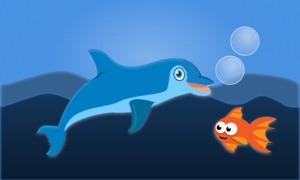 Dolphin Patrol!
