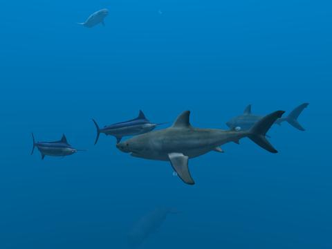 Ocean Dream screenshot