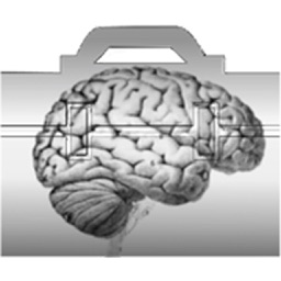 Neurology Exam Tools