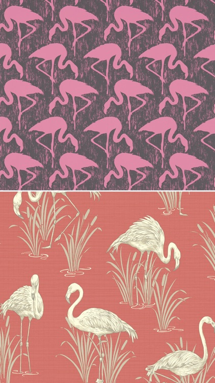 Flamingo Pattern Wallpapers - Best Collections Of Flamingo Design Pattern