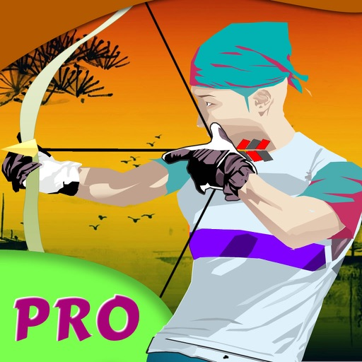 A Combat Arrow Shot PRO