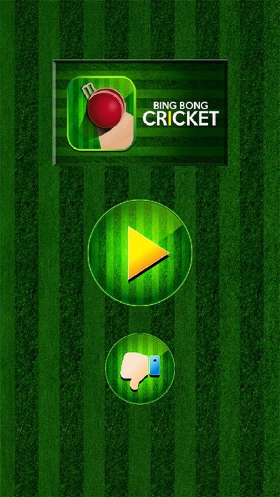 Bing Bong Cricket screenshot three