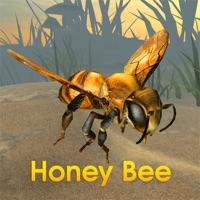 Codes for Honey Bee Simulator Hack