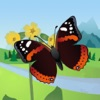Butterfly ID Europe: A guide to common and noteworthy butterflies and day-flying moths of west and north-west Europe