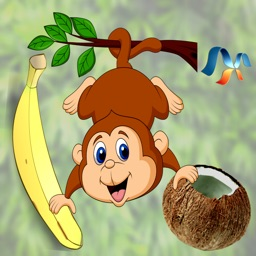Nuts & Bananas
