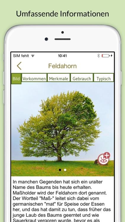 Bäume & Sträucher bestimmen – entdecken Sie die Natur und erkennen Sie welche Pflanzen, Blätter und Hölzer Sie umgeben