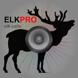 REAL Elk Hunting Calls-Elk Calling Elk Bugle