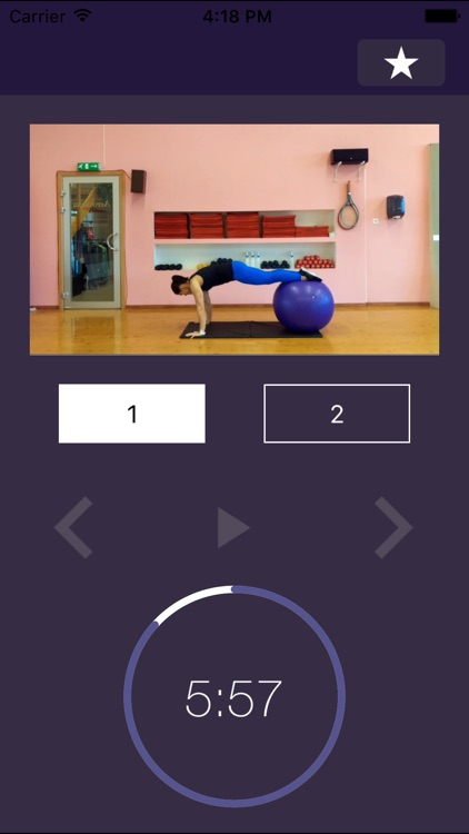 Stability Ball Exercises – Swiss Exercise Program for Strength and Physically Strong Gym Body screenshot-4