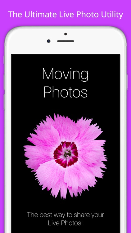 Moving Photos - for Live Photo screenshot-4