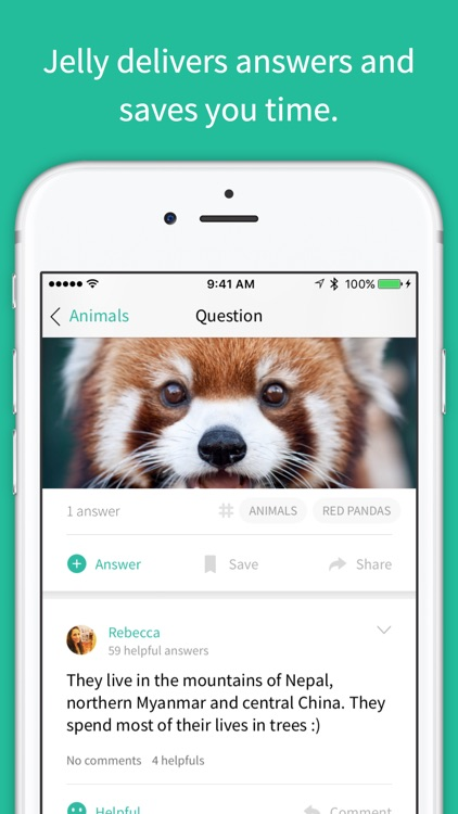 Jelly — a search engine for busy people screenshot-4