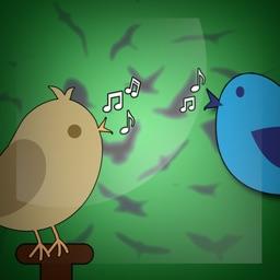 Super Birds Sounds