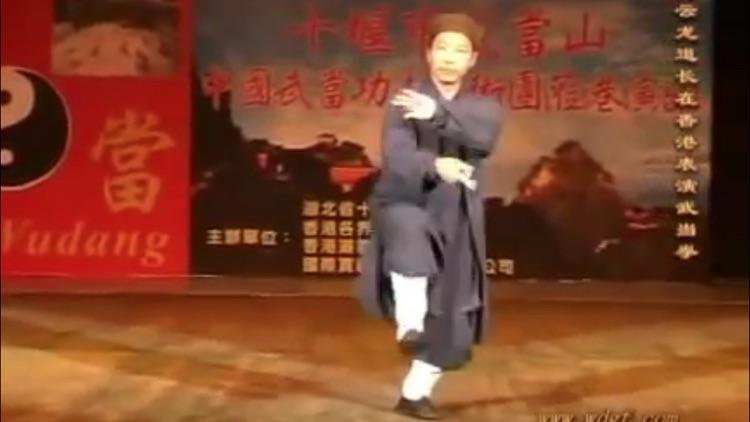 Teach Yourself Tai Chi screenshot-4