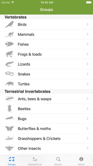 Field Guide to Victorian Fauna screenshot two