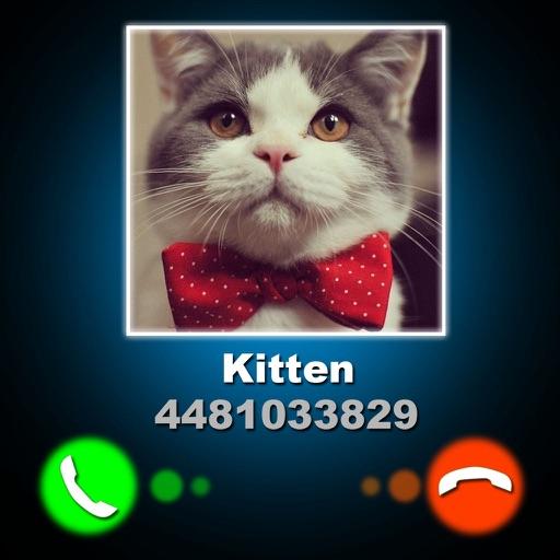 Ложный Звонок Котенка Шутка
