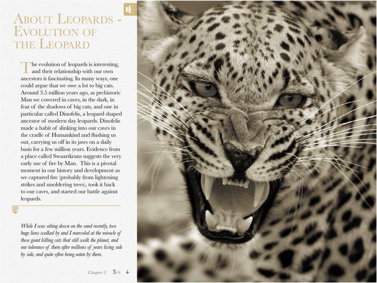 Eye of the Leopard screenshot-3
