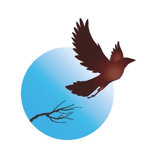 Blackbird Wellness