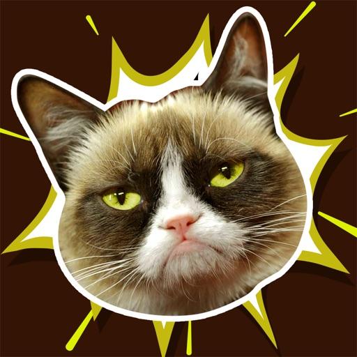 Grumpy Cat Meme - Latest Fun.ny Fat and Happy Cats Photo.bombs