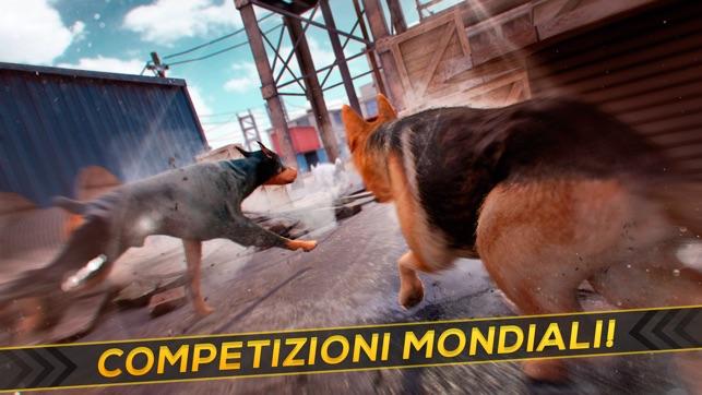 Il mio cane da corsa giochi gratis di cani e animali for Giochi di macchine da corsa gratis