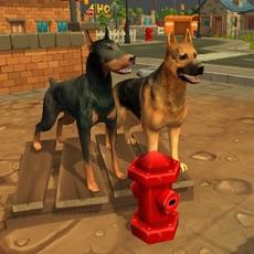 Activities of Doggy Dog World